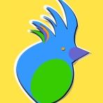 birdzz